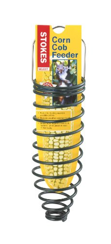 Stokes Select Corn Cob