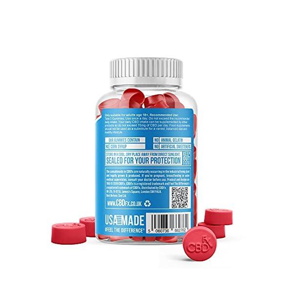 CBDfx Mixed Berry CBD Gummies (60 Gummy Bottle) – 1500mg CBD