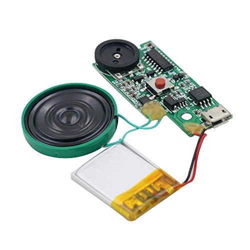 Why Should You Buy Rechargeable MP3 Sound Chip Module Voice Player Circuit Board with Speaker Lithiu...