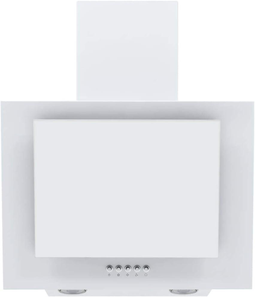 Estink Campana extractora de cocina de 60 cm, acero inoxidable, cristal templado blanco, extra silencioso, 2 bombillas LED integradas, 550 m³/h, 112 W
