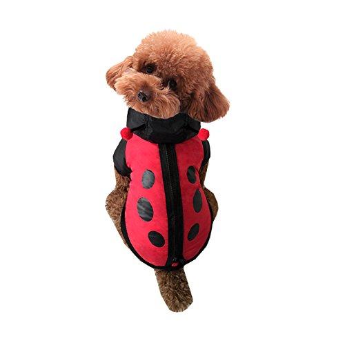 [Pineocus Red Ladybug Windbreaker Style Pet Dogs Coat Size S] (Pet Ladybug Costume)