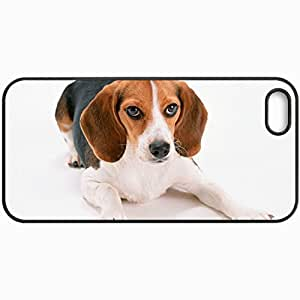 Customized Cellphone Case Back Cover For iPhone 5 5S, Protective Hardshell Case Personalized Dog Ushastik Is Black