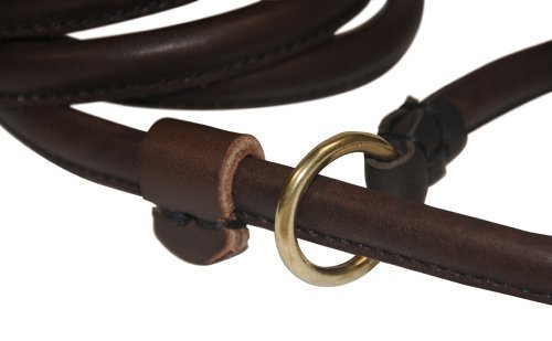 Dean and Tyler 2-in-1 DT Rolled Slip Leash, Brown 6-Feet by 1/2-Inch Diameter With Solid Brass Hardware. by Dean & Tyler (Image #1)