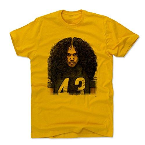 Amazon. Troy Polamalu Pittsburgh Steelers Memorabilia 780100248