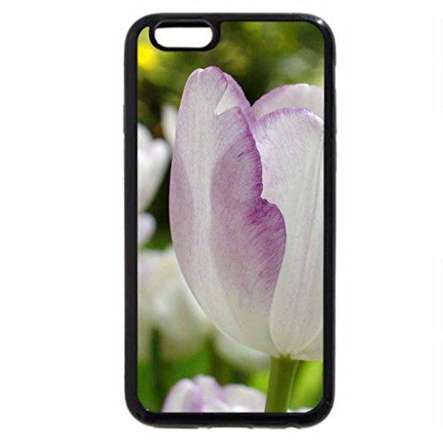 iPhone 6S / iPhone 6 Case (Black) White purple tulips