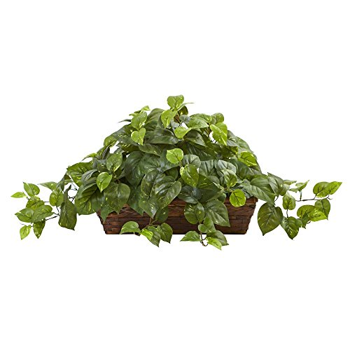 Nearly-Natural-Pothos-Silk-Plant-with-Ledge-Basket
