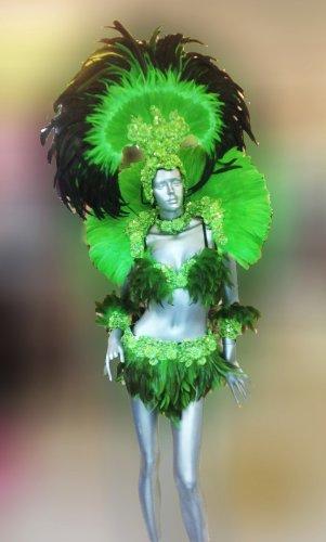 Da NeeNa C0272 Samba Parade Carnival Rio Feather Headdress Costume Set (Rio Carnival Samba Costumes)