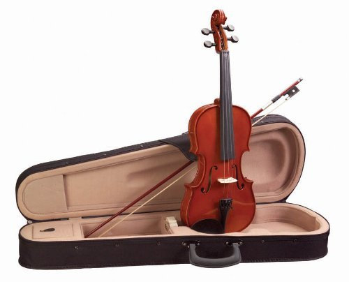 Academy 3/4 Violin Outfit, Red-Gold Gloss (145AU)