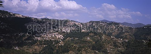 Houses on a mountain, Shimla, Himachal Pradesh, India Gallery-Wrapped Canvas