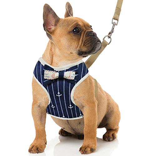 RYPET Small Dog Harness and Leash Set - Navy Style No Pull Pet Harness with Soft Mesh Nylon Vest for Small Dogs and Cats Navy Blue S ()