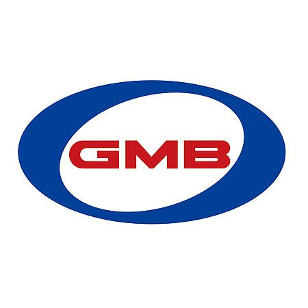 GMB 148-1390 Water Pump, 1 Pack