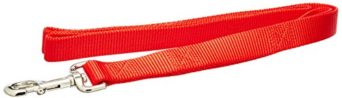 Coastal Pet Products DCP904HRED Nylon Loops 2 Double Handle Dog Leash, 1-Inch by 4-Feet, Red ()