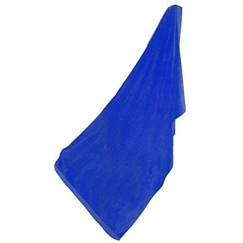 (robesale Loop Terry Beach Towels, Royal Blue)