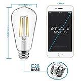 Vintage LED Edison Bulbs 60 Watt Equivalent,Eye
