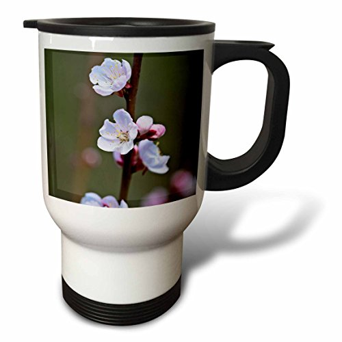 3dRose Alexis Photography - Flowers Sakura Beautiful - Soft pink and white Japanese apricot flower on a twig in spring - 14oz Stainless Steel Travel Mug (tm_286528_1) by 3dRose