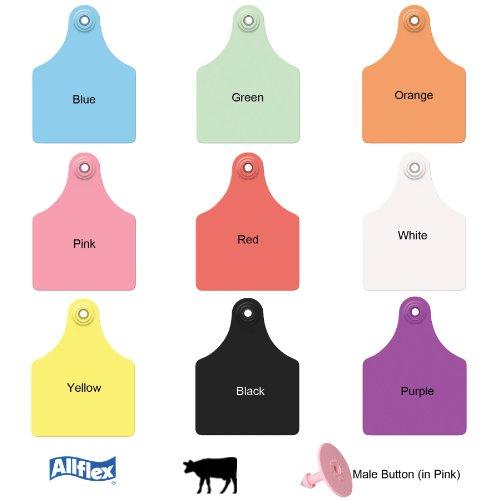 Allflex Global Maxi Blank Cattle Ear Tags 25 Ct Purple