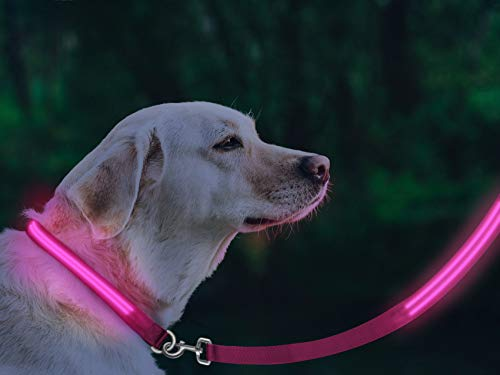 [FunnyBubble] LED Dog Safety Leash- USB Rechargeable, 3 Light Modes - Available in 5 Colors and Matching Collars (Pink) (Led Dog Leash Rechargeable)
