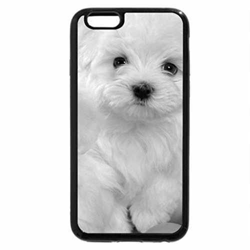 iPhone 6S Case, iPhone 6 Case (Black & White) - Dogs On Balls