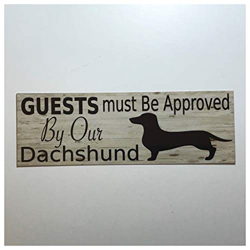 Tiukiu Guests Must Be Approved by Our Dachshund Dog for sale  Delivered anywhere in USA