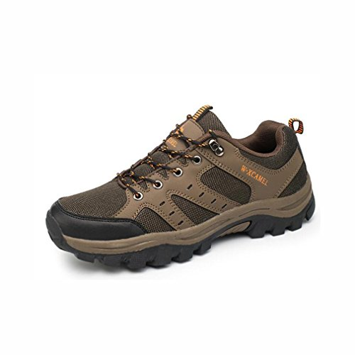 Yaxuan Hiking Shoes,Mens Shoes - Lightweight Shoes, Mesh Lining Footwear, Heel & Toe Bumpers - For Walking, Hiking, Travelling This Summer,B,41