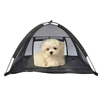 Portable Pet Tent Dog Cat Pop Up C&ing Mesh House Enclosure Shelter w/ Bag  sc 1 st  Amazon.com & Amazon.com : Portable Pet Tent Dog Cat Pop Up Camping Mesh House ...