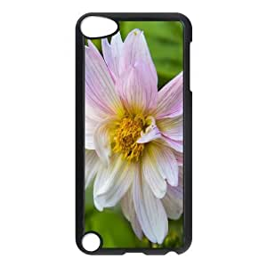 Ipod Touch 5 Cases Decent Daisy, Ipod Touch 5 Cases Daisy for Teen Girls Protective, [Black]