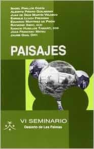 PAISAJES-VI SEMINARIO DESIERTO DE LAS PALMAS: AAVV: 9788483534250