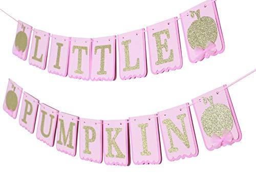 or Baby Shower Little Pumpkin Banner Little Pumpkin Happy Birthday Banner Party Decorations