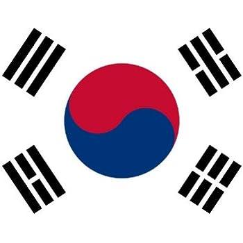 amazon com 3x5 polyester flag of south korea outdoor flags