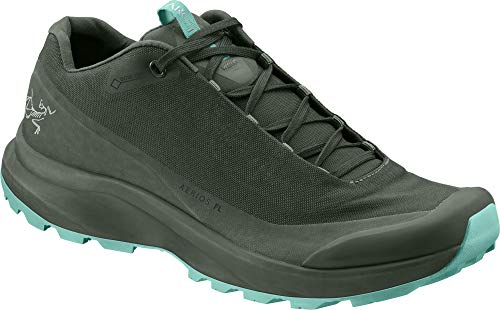 Arc'teryx Aerios FL GTX Approach Shoe - Women's Shorepine/Illucinate 5.5