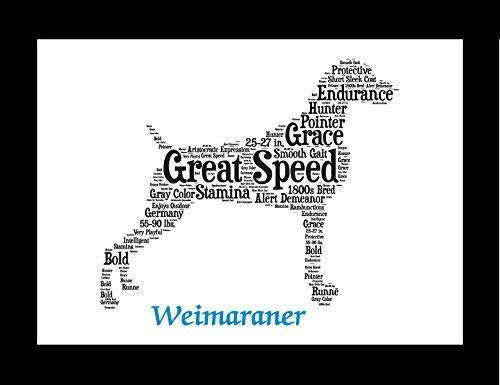 (Weimaraner Dog Wall Art Print - Personalized Pet Name - Gift for Her or Him - 11x14 matted - Ships 1 Day)