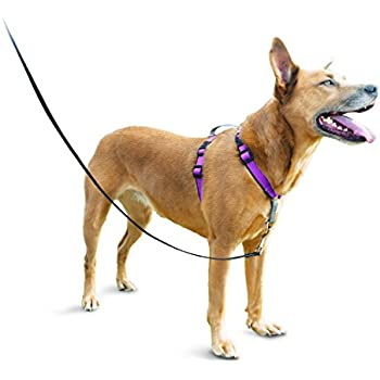 PetSafe Easy Walk Harness Toys /& Behavior EWH-HC-S//M-BLK