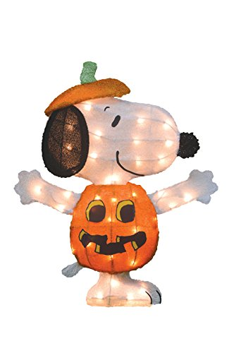 [ProductWorks 24-Inch Pre-Lit Peanuts Snoopy Jack-O-Lantern Halloween Yard Decoration] (Halloween Yard)