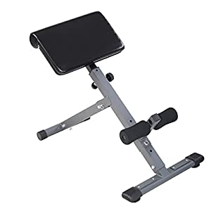 Goplus Adjustable AB Bench Hyperextension Exercise Abdominal Roman Chair