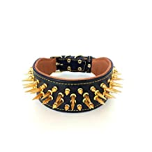 Bestia genuine leather dog collar with screw spikes and soft leather cushion. Wide. Durable. Longlasting. Padded. Pitbull. Bulldog. Bully. APBT. Rottweiler. Cane corso. 2.8 inch wide!
