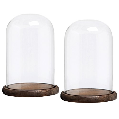 (MyGift 10 x 7 Inches Clear Glass Cloche Bell Jar Display Case with Round Wood Base, Set of)