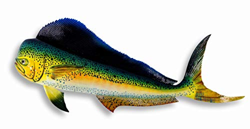 LX Hand Painted Mahi Dolphin Salt Water Game Fishing Wall Mount Decor 28