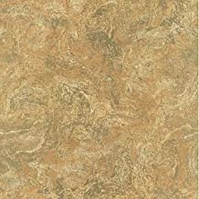 PL185631 SAMPLE 8x10 INCHES Florentine Marble Earth Paper Illusions Wallpaper Torn Faux Finish Wallpaper Illusion PaperIllusion SAMPLE
