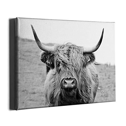 PKONE Cow Canvas Framed Wall Art Decor Wild Cattle Painting Modern Highland Animal Home Artwork Print for Living Room…