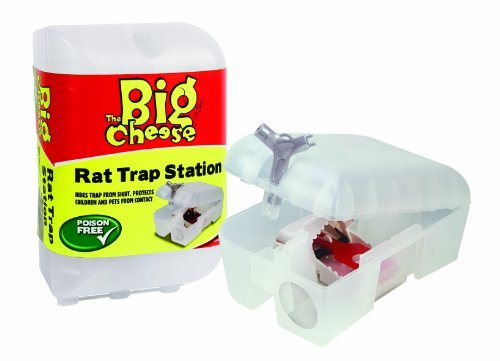 Rat Trap Station by Toolbank