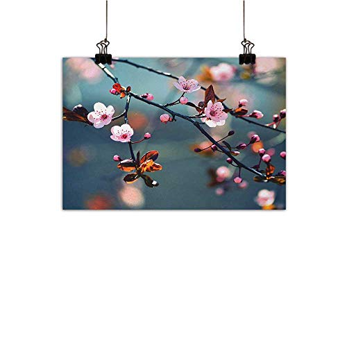 Nature Hanging Painting Japanese Blooming Cherry Tree Flowers on Branch Sakura Theme Picturehome Crossing paintingLight Pink Orange and Blue W36 x H24