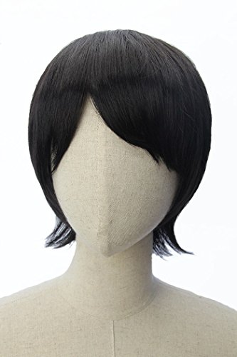 Short Straight Men Hair Wig Black Wigs for Cosplay Anime Costume Party ()
