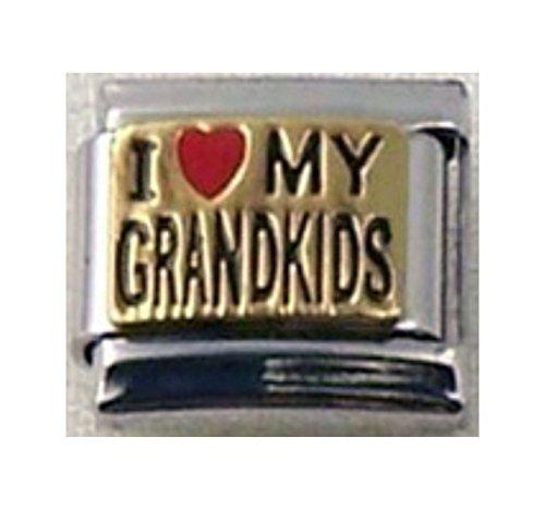Stylysh Charms Grandkids I Love My Grandkids Enamel Italian 9mm Link FA032