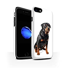 STUFF4 Gloss Tough Shock Proof Phone Case for Apple iPhone 8 / Swiss Mountain Design / Dog Breeds Collection