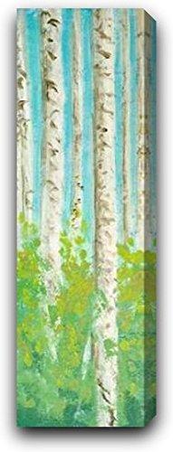 "Vibrant Birchwood I by Walt Johnson - 10"" x 30"" Gallery Wrapped Premium Canvas Print"