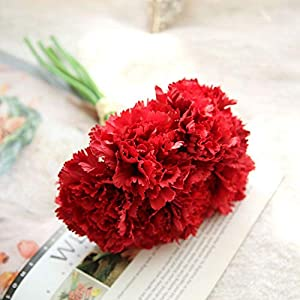 Vidillo Artifical Carnation Flowers,6 Pcs Real Looking Fake Flowers Bouquet UV Resistant Plants Faux Plastic Greenery Shrubs for Wedding Anniversary Garden Home Outdoor Festival Party Decor (Red) 10