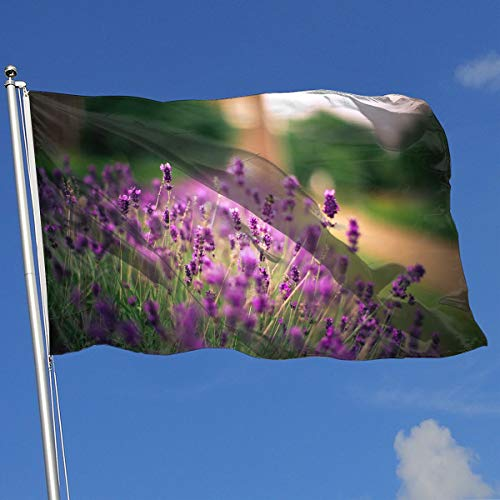 DENETRI DYERHOWARD Fly Breeze 3 X 5 Foot Flag Lavender Green Vivid Color and UV Fade Resistant Canvas Header and Double Stitched Garden -