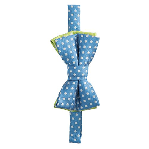 Elegant Baby Boy Zoom Zoom Bow Tie (Blue Dots)