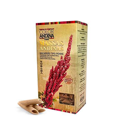 Massa de Quinoa Color Andina Food, tipo Penne 70% Quinoa, 1 caixa 300g