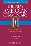 The New American Commentary Volume 25A - John I-II